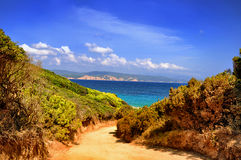 Sunny Tropical Summer Paradise Beach. The Golden Path leading to marine paradise Royalty Free Stock Photography