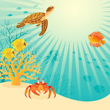 Sunny underwater life Royalty Free Stock Image