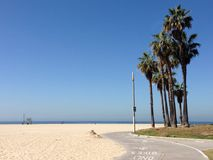 Sunny venice beach atmosphere. Palmtrees as a little island near the path for bycicles,skating and walking along the beach, sand, water, sunshine, bright sky royalty free stock photo