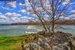 Sunny View de rivière d'île Images libres de droits