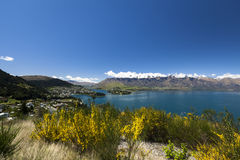 Sunny view of Queenstown Royalty Free Stock Photos