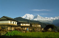 Sunny village Stock Image