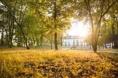 Sunny warm evening in a park. Near the city royalty free stock photo