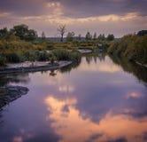 Sunny Water Scene rural - étang de l'eau avec une réflexion ensoleillée des nuages et des arbres en mer rurale boisée Photos libres de droits