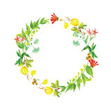 Sunny watercolor round vector frame Royalty Free Stock Images