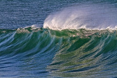 Sunny wave Stock Images