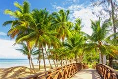 Sunny way to the beach royalty free stock photography