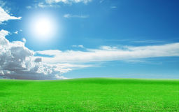 Sunny weather on a green field. Grass on the field and clouds in the sky lit bright sun Royalty Free Stock Image