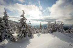 Sunny weather in the mountains of the Carpathians. Blue sky. royalty free stock photography