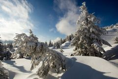 Sunny weather in the mountains of the Carpathians. Blue sky. royalty free stock image