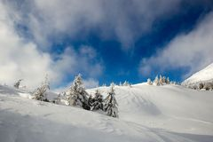 Sunny weather in the mountains of the Carpathians. Blue sky. stock photography