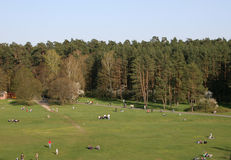 Sunny weekend in park of Vilnius Royalty Free Stock Images