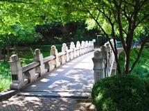 Sunny white stone bridge under green trees Stock Photography
