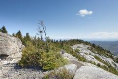 Sunny Windswept Bald Peak, montanhas de Adirondack imagem de stock