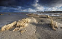 Sunny windy day on north sea coast. Texel, Netherlands Stock Photography