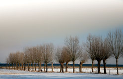 Sunny winter. Winter sceneries in denmark royalty free stock photo