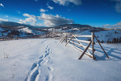 Sunny winter day. Carpathian mountain valley covered by fresh snow. Sunny winter day. Ukraine, Europe Royalty Free Stock Images
