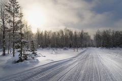 Snowy road through forest with snowmobile tracks in a bright winter day Royalty Free Stock Photo