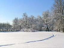 Sunny winter day Stock Images
