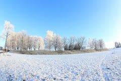 Sunny Winter Day Stock Photo
