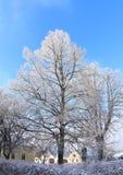Sunny Winter Day Royalty Free Stock Photos