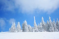 Sunny winter day in mountain Royalty Free Stock Photos
