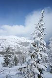 Sunny winter day in mountain Stock Image