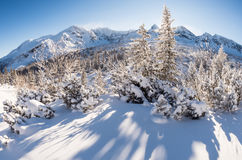 Sunny winter day in the mountains Stock Image