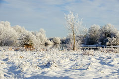 Sunny winter day on the river Stock Image
