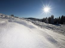Sunny winter landscape Royalty Free Stock Images