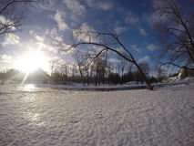 Sunny Winter Landscape lizenzfreie stockfotografie