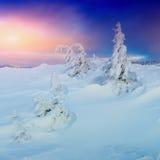Sunny Winter Landscape Lizenzfreie Stockfotos