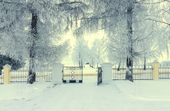 Sunny Winter Landscape Photo stock