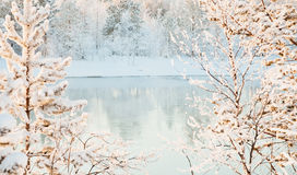 Sunny winter landscape - river Stock Photography