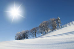 Sunny Winter Landscape Scene Royalty Free Stock Images