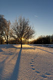 Sunny winter landscape. Snowy rural road in evening sun and jetstream stock image