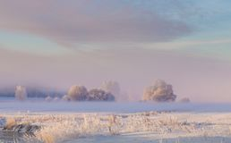 Sunny winter landscape. Hoarfrost and snow covered fields and trees Stock Photography