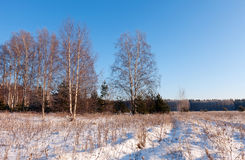 Sunny winter lanscape Royalty Free Stock Images