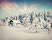 Sunny winter morning in the mountain village after heavy snowfal. L. Beautiful outdoor scene, Happy New Year celebration concept. Artistic style post processed Royalty Free Stock Photos