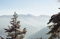 Sunny winter mountain landscape Royalty Free Stock Image
