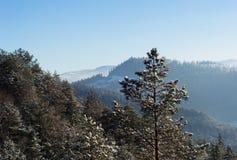 Sunny winter mountain landscape stock photo