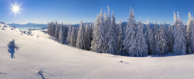 Sunny winter panorama of snowwy mountains Stock Photography