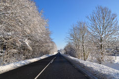 Sunny winter road. A road in a sunny winter day Royalty Free Stock Photos