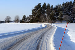 Sunny winter road Royalty Free Stock Images