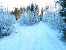Sunny winter road Royalty Free Stock Photos