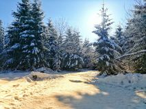 Winter Wonderland. Sunny Winter Wonderland Royalty Free Stock Photography