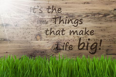 Sunny Wooden Background, Gras, cita le piccole cose rende la vita grande Immagini Stock Libere da Diritti