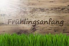 Sunny Wooden Background, Gras, Fruehlingsanfang veut dire le début du ressort photo stock
