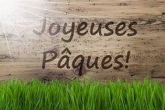 Sunny Wooden Background, Gras, Joyeuses Paques veut dire Joyeuses Pâques photographie stock libre de droits