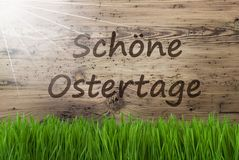 Sunny Wooden Background, Gras, Schoene Ostertage Means Happy Easter Royalty Free Stock Images